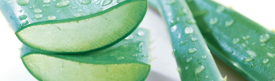 BIO Aloe for ømfintlig hud